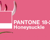 Pantone's Color of the Year 2011